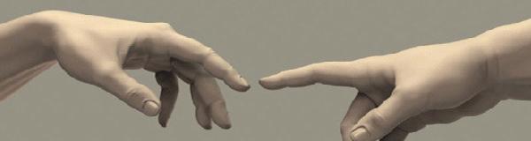Human Hand Study